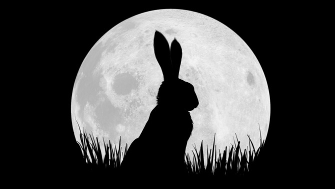 Stars sign up for Watership Down remake