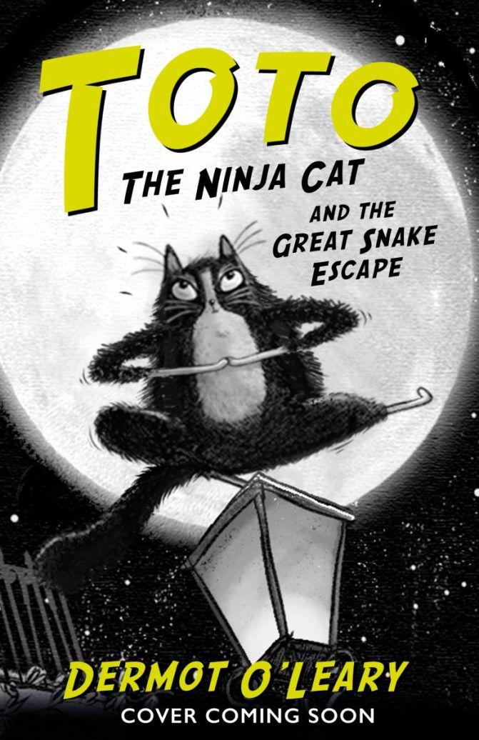 Dermot O'Leary and the Ninja Cat